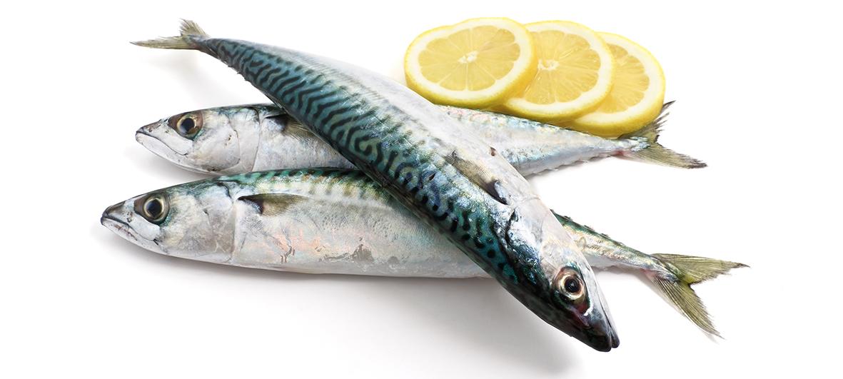 Los españoles destacan en consumo de pescado
