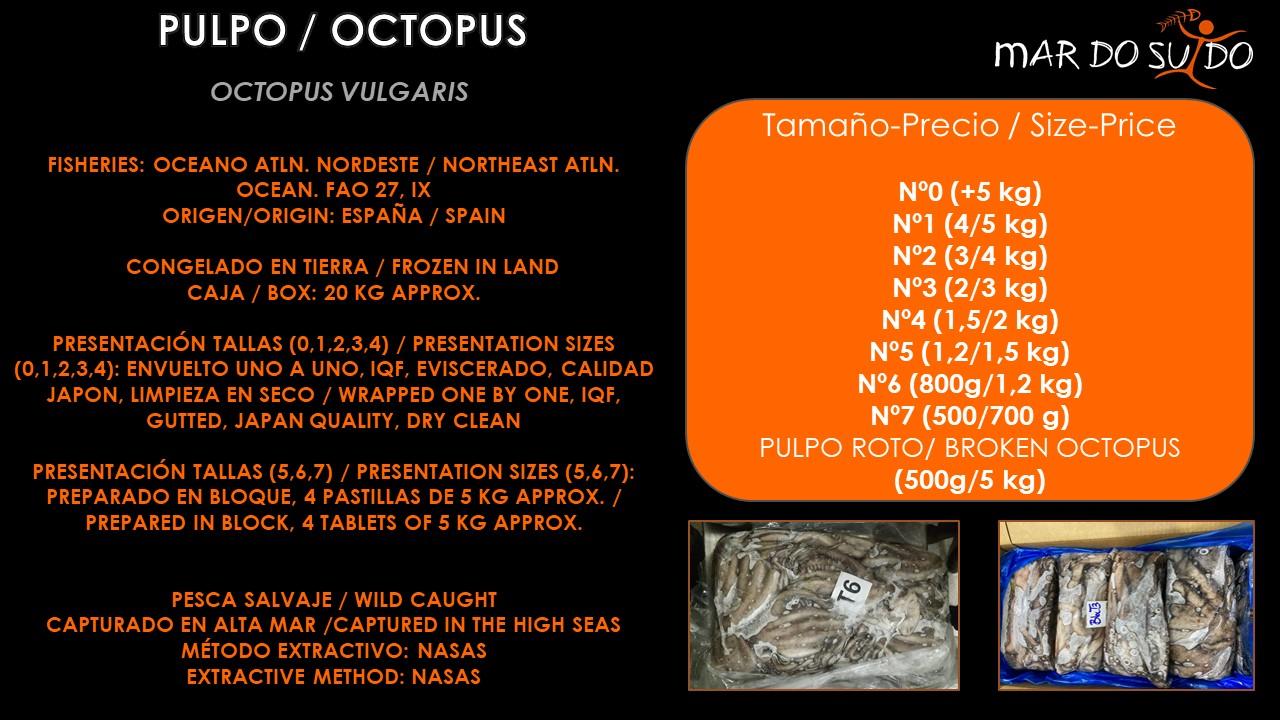 Oferta Destacada de Pulpo - Octopus Special Offer