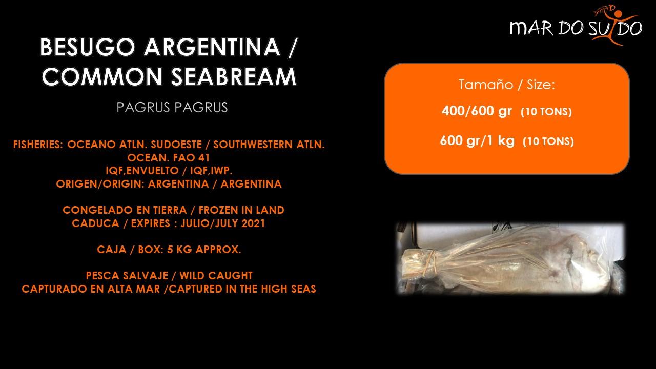 Oferta Destacada de Besugo Argentina - Common Seabream Special Offer