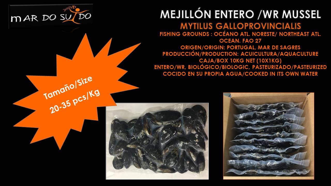 Oferta Destacada de Mejillón / Mussel Special Offer