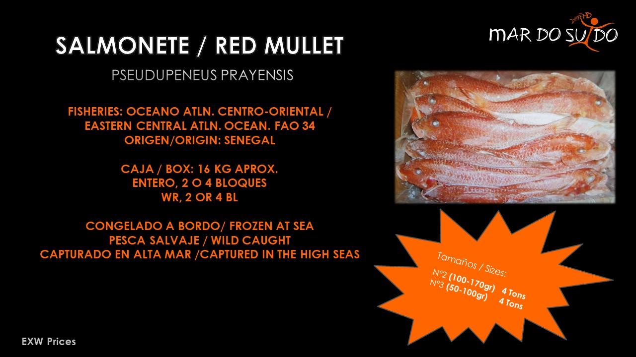 Oferta Destacada de Salmonete - Red Mullet Special Offer