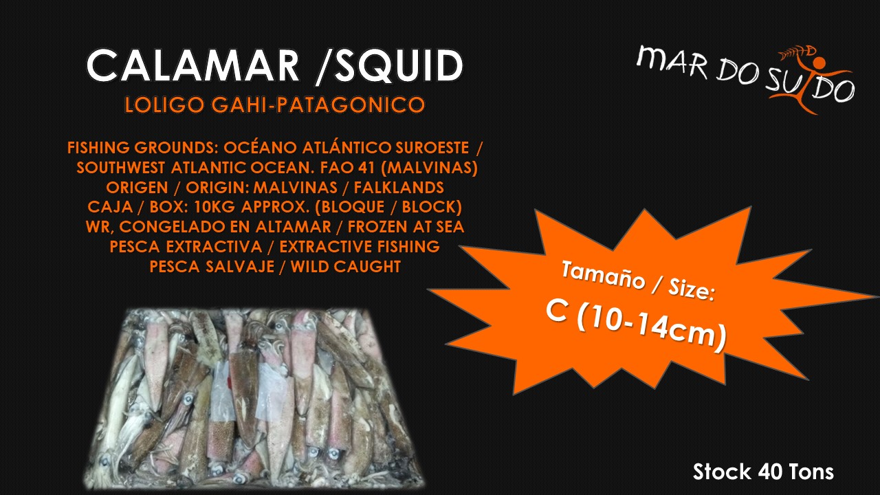 Oferta Destacada de Calamar Malvinas - Falklands Squid Special Offer