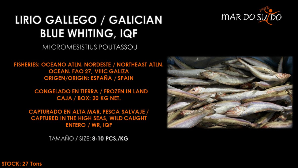 Oferta Especial de Lirio Gallego - Galician Blue Whiting Special Offer