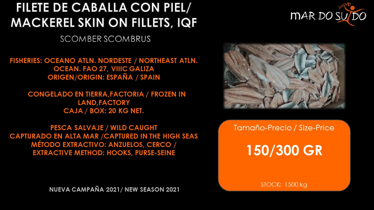 Oferta Destacada de Filete de Caballa Con Piel IQF - Mackerel Skin On Fillets Special Offer
