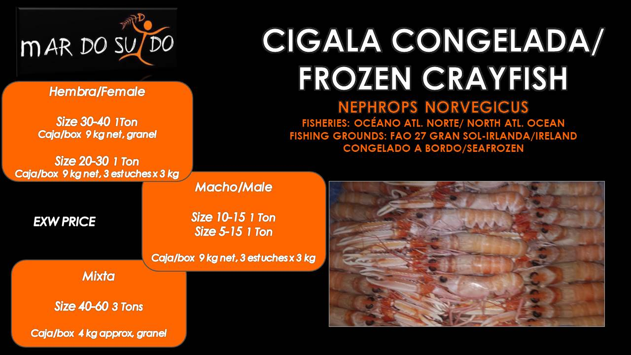 Oferta Destacada de Cigalas - Frozen Crayfish Offer
