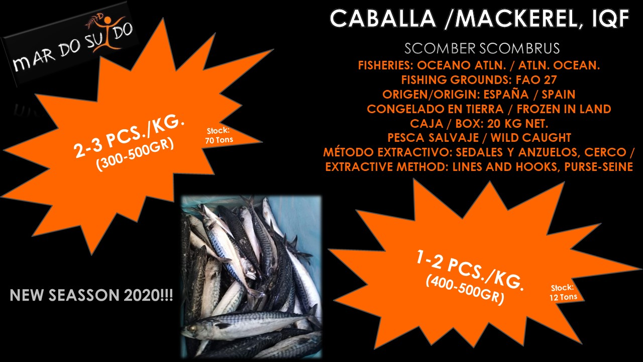 Oferta Destacada de Caballa / Mackerel Special Offer