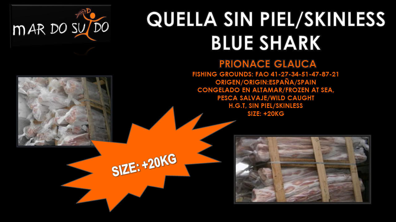 Quella Sin Piel - Skinless Blue Shark