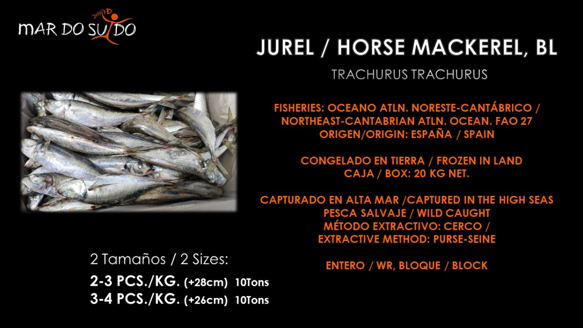 Oferta Especial de Jurel -  Horse Mackerel Special Offer
