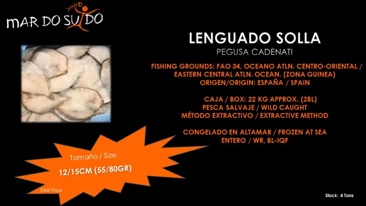 Oferta Destacada de Lenguado Solla - (Pegusa Cadenati) - Special Offer
