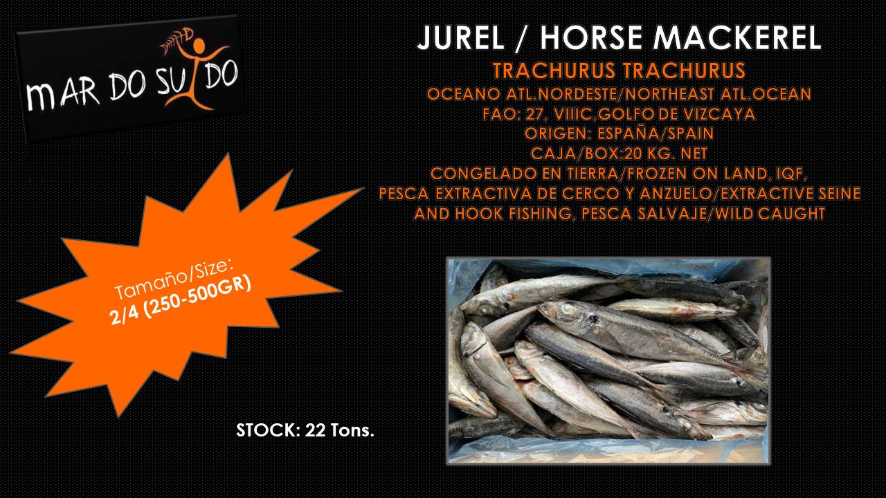 Oferta de Jurel - Horse Mackerel Offer