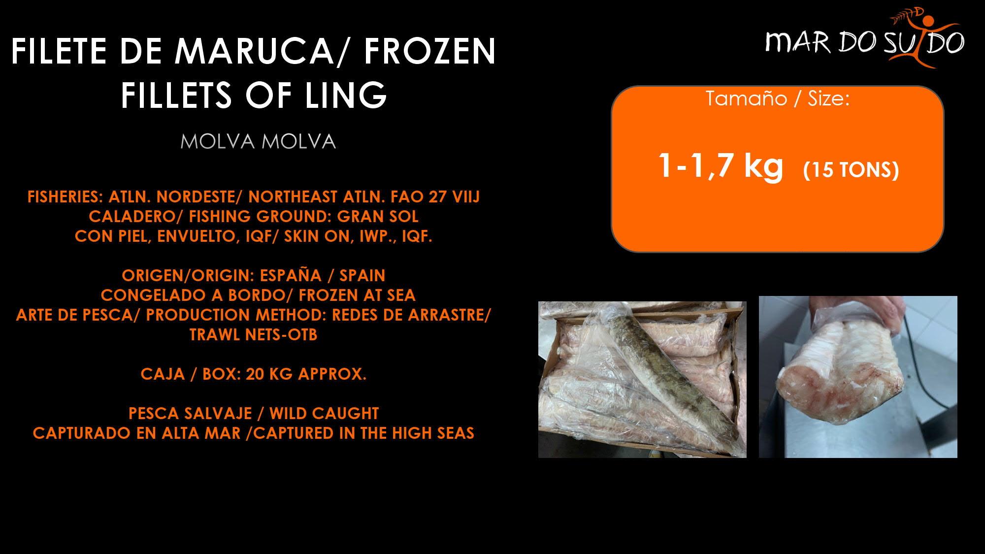 Oferta Destacada de Filete de Maruca - Frozen Fillets of Ling Special Offer