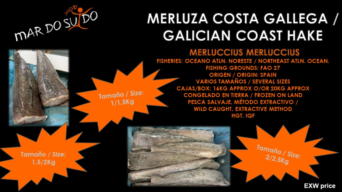 Oferta Destacada Merluza Costa Gallega / Galician Coast Hake Special Offer