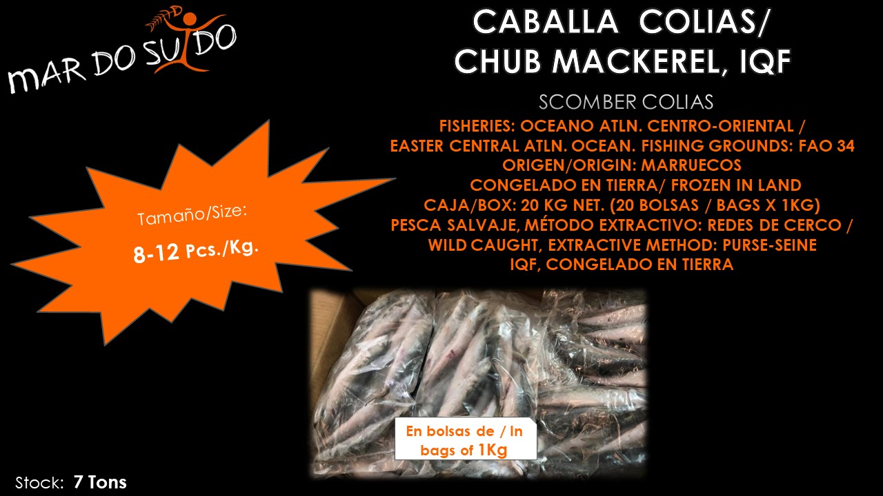 Oferta Destacada Caballa Colias - Chub Mackerel Special Offer