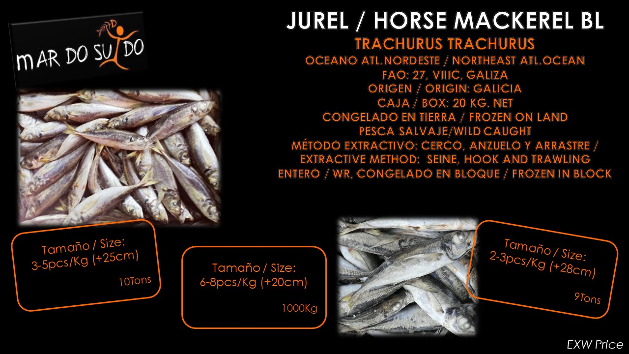 Oferta Destacada de Jurel - Horse Mackerel Special Offer BL