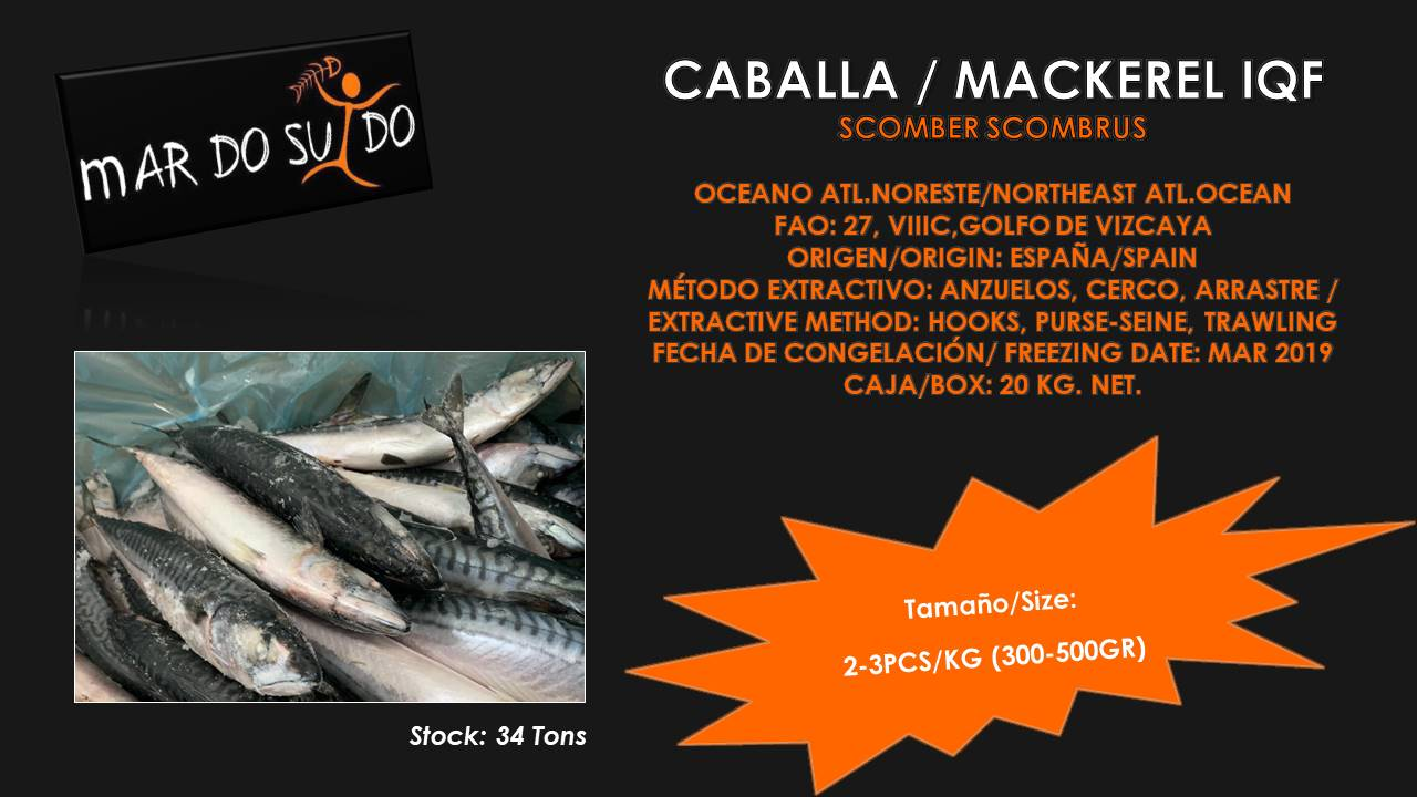 Oferta Destacada de Caballa - Mackerel Special Offer